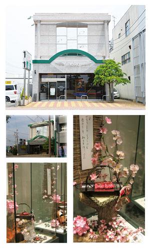 キラキラキラinoko本店